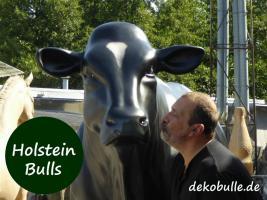 Foto 6 wann kaufst Du Dir mal einen Deko Stier oder so einen Deko Bulle lebensgroß ...?