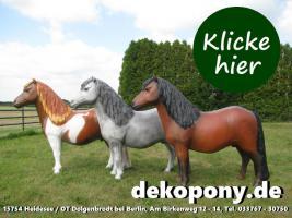 wann kaufst Du Dir so ein Shetland Deko Pony lebensgroß ???
