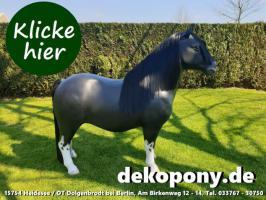Foto 2 wann kaufst Du Dir so ein Shetland Deko Pony lebensgroß ???