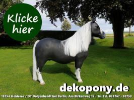 Foto 3 wann kaufst Du Dir so ein Shetland Deko Pony lebensgroß ???