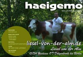 wann kaufst Du ne Deko Kuh lebensgroß für Deinen Garten ...?
