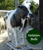 Foto 4 wann kaufst Du ne Deko Kuh lebensgroß für Deinen Garten ...?