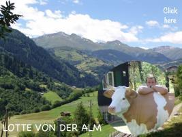 Foto 2 warum kaufen sie sich nicht eine deko kuh die ne tragkraft bis zu 130 kg hat ...