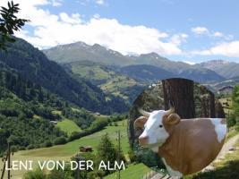 Foto 3 warum kaufen sie sich nicht eine deko kuh die ne tragkraft bis zu 130 kg hat ...
