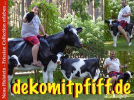 Foto 4 warum kaufen sie sich nicht eine deko kuh die ne tragkraft bis zu 130 kg hat ...