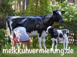 warum mietest Du Dir nicht einfach ein Melkkuh …??? wo …  melkkuhvermietung.de anklicken ...