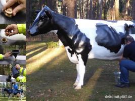 Foto 2 warum mietest Du Dir nicht einfach ein Melkkuh …??? wo …  melkkuhvermietung.de anklicken ...