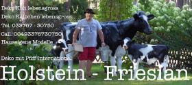 Foto 5 warum mietest Du Dir nicht einfach ein Melkkuh …??? wo …  melkkuhvermietung.de anklicken ...