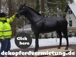 Foto 2 was den du hast noch kein deko pferd lebensgross gemietet … echt jetzt …?