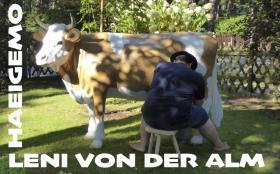 Foto 4 was du hast noch keinen deko stier für die hochzeit …?