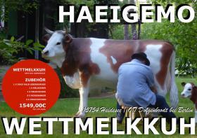 Foto 2 was zahlst du in der österreich für so ein deko kuh lebensgroß - Modell was auch noch eine melkkuh ist …?