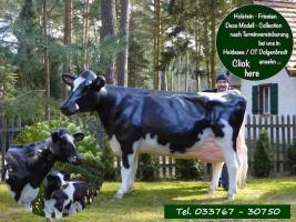 Foto 6 weist was kauf dir nal ne deko kuh lebensgroß