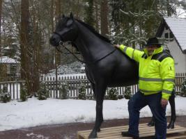 Foto 6 wie unser Nachbar hat ein neues Pferd und ne neue Kuh im Wohnzimmer sehn ...?
