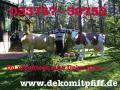 willst man ne Deko Kuh im Garten ...