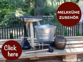 Foto 2 wo kaufst du deine deko kuh lebensgross …? hast schon mal bei www.dekokuh.de dich umgesehn ?