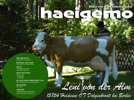 Foto 5 www.dekokuh.de ... wie du willste ne deko kuh kaufen ...