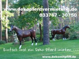 Foto 3 www.dekopferd.de einfach anklicken wenn Sie ein Deko Pferd lebensgross erwerben möchten.