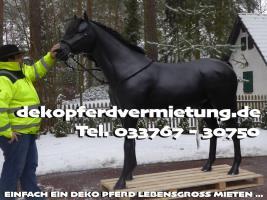 www.dekopferdvermietung.de Kann man da ein Deko Pferd lebensgroß mieten ???