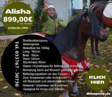Foto 3 www.dekopferdvermietung.de Kann man da ein Deko Pferd lebensgroß mieten ???