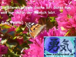 www.einfairerdeal.de